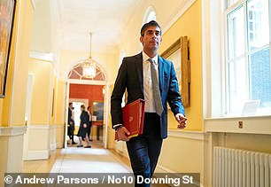 Fears have been raised that Chancellor Rishi Sunak is close to the edge as he works 18-hour days battling the Covid crisis