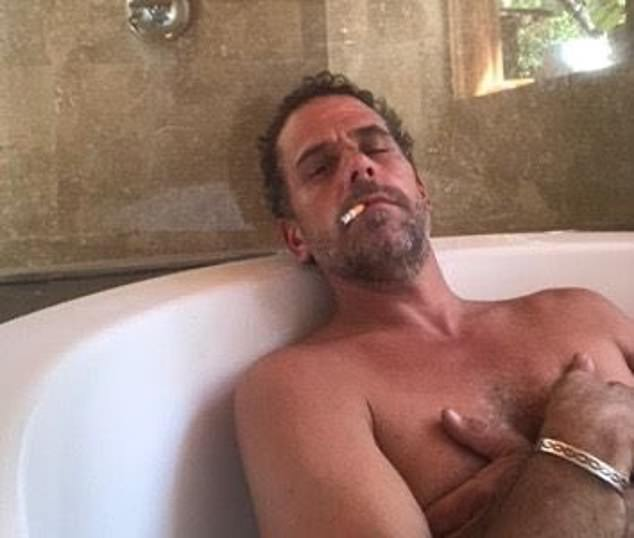 Hunter Biden became so addicted to illicit sexual thrills that he once spent $11,400 on a single night of debauchery at a New York strip club and shelled out more than $21,000 to one adult 'live cam' porn website