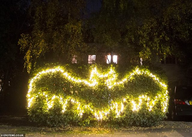 Eye-catching: The TV star, who wore a face mask for the evening, also strung up fairy lights on his front hedge in the symbol of a bat