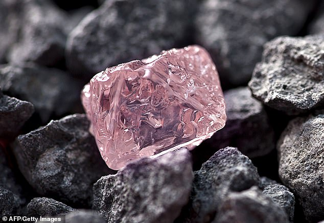 The 12.76 carat Argyle Pink Jubilee pictured in 2012. This rough fancy pink gem is typical of the Argyle mine which has produced more than 90 per cent of world supply since 1983