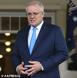 Scott Morrison (pictured) angered Beijing back in April by calling an independent international investigation