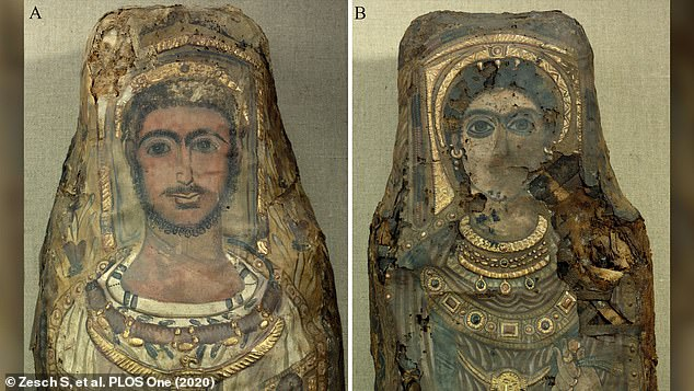They are the only known surviving 'stucco-shrouded portrait mummies' from Saqqara - an ancient Egyptian necropolis - and were first discovered in 1615