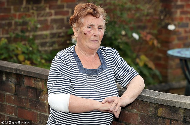 A pit bull owner has been jailed after his trained fighting dog mauled Mary Rollinson, 74, (pictured) 'like a lion dragging an antelope' leaving her with horrific injuries