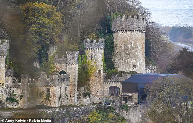 High-level:More than 40 security guards are protecting the I'm a Celebrity... Get Me Out Of Here! campmates at their new Welsh base, MailOnline can reveal