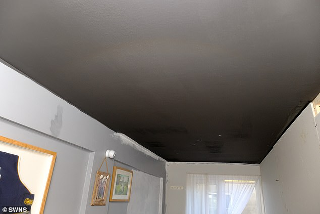Mr Berrick painted his whole house with a 5G protective paint and also used an EMF reader
