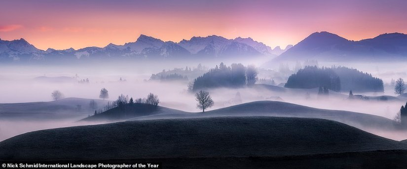 This haunting, misty shot of Hirzel in Switzerland was snapped by photographer Nick Schmid. The judges deemed it definite top 101 material