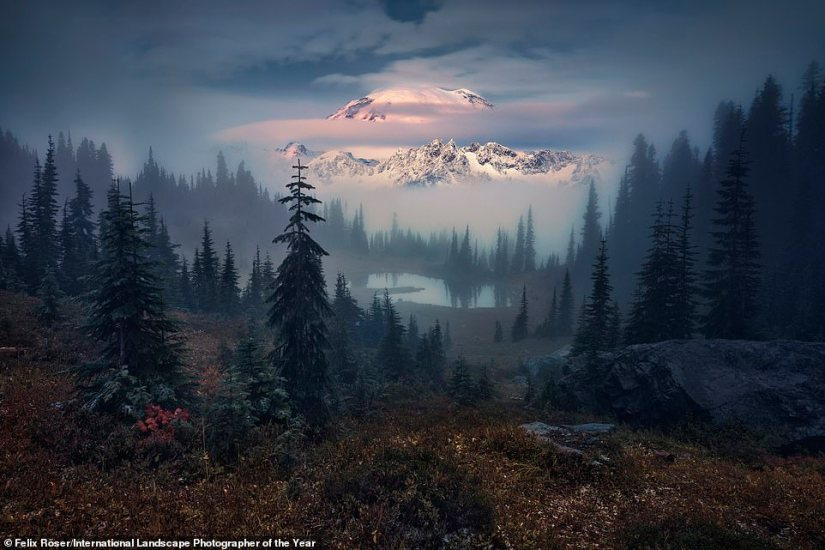 This magnificent image, called Hide & Seek, was snapped by Felix Roser and is in the judges' top 101 images. It shows Little Tipsoo Lake in the Cascade Mountain Range in Washington State