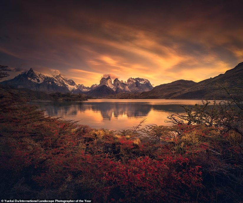 Another stunning shot of Torres del Paine National Park in Chile by Yuekai Du. This one, also in the top 101 list, is called Banquet
