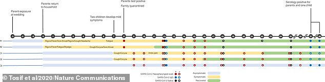 Pictured, a timeline of events for the Australian family of five and their brush with coronavirus following the infection of the two parents at a wedding in March