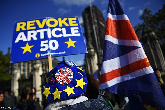 Outside the US, Soros has backed political issues Remain in the UK's Brexit debate. Pictured: Pro-EU supporters at a rally in 2019 [File photo]