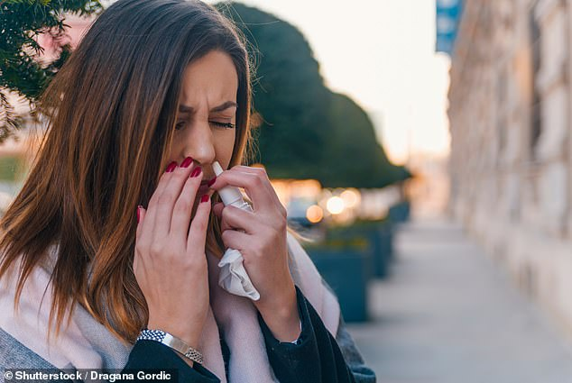 The gellan component allows the spray to be administered as a fine mist and once it is in the nose it catches and encases SARS-CoV-2, the coronavirus which causes Covid-19, and it is neutralised by swallowing or by blowing of the nose (stock)