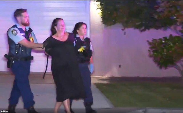 Samantha Palmer, 55, (pictured) was arrested after her son was found stab wounds at their home at Bellevue Hill in Sydney's eastern suburbs at 1.30am on Saturday