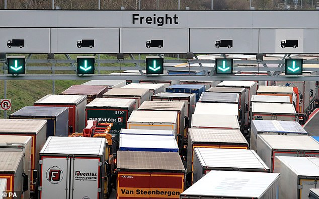 Freight lorries queueing along the M20 in Kent.Getlink said the queues were 'not representative' of a no-deal Brexit however, as half of the available lanes were blocked off