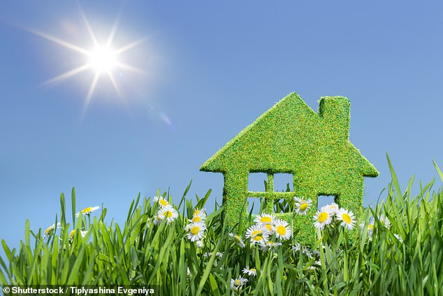 There are many green energy deals on the market at the moment, helping the environment