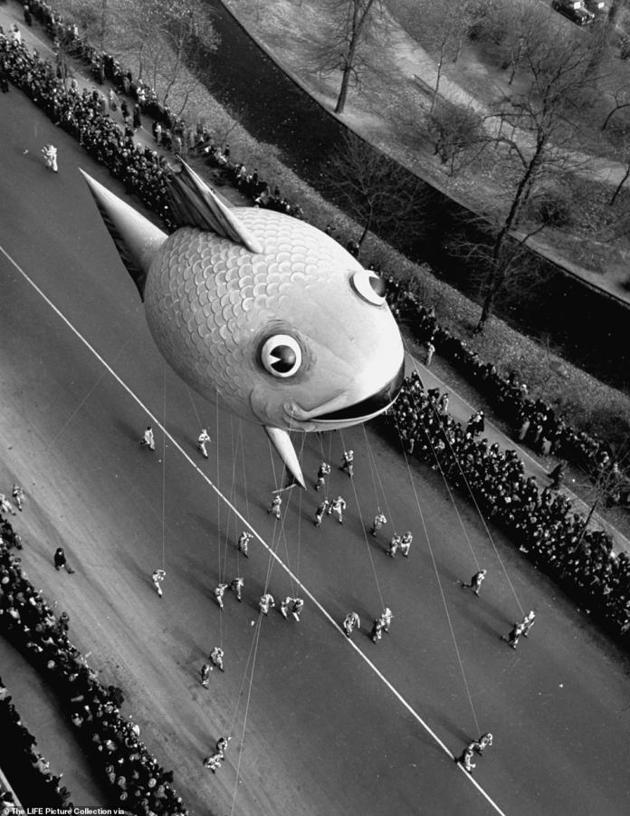 A bloated fish makes his way past Central Park in 1941.The parade was suspended between 1942 and 1944, due to a shortage of rubber and Helium as a result of World War II. Macy's donated all their deflated balloons to the effort, resulting in 650 pounds of rubber