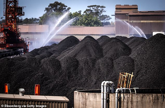 Coal exports to China from Australia have dropped 96 per cent in the first three weeks of November amid reports the Asian superpower is blocking exports of the valuable commodity Pictured: Water is sprayed over piles of coal at the Port of Newcastle in Newcastle, New South Wales