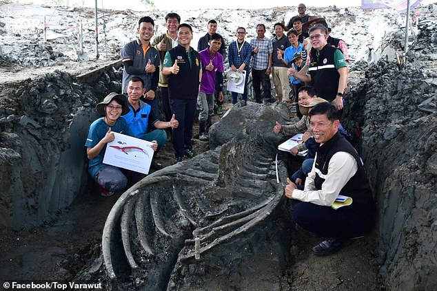 Images of the whale skeleton were shared on Facebook by Thailand's environment minister, Varawut Silpa-archa, the son of the country's former prime minister