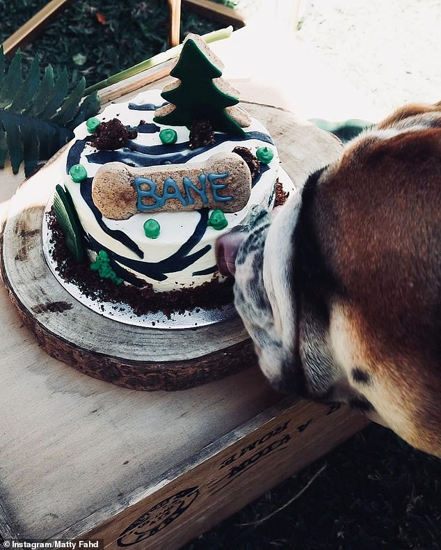 Woof! The party also doubled as a celebration for the couple's bulldog's third birthday