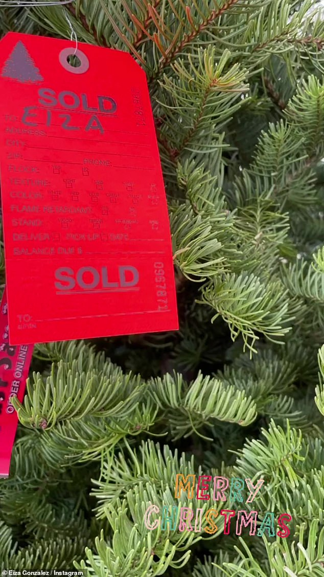 Getting in the spirit:Shortly after stoping by Alfreds, the Bloodshot star took to Instagram to give her 6.4million followers a look at her newly purchased Christmas tree