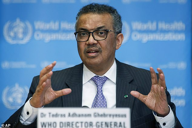 US economist David Steinman accused Tedros (pictured) of being one of three officials who led Ethiopia's security forces from 2013 to 2015