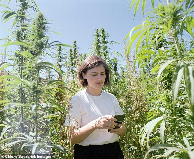 The young MP - who's a staunch advocate of legalising cannabis - worked in radio and ran an art gallery before settling on politics