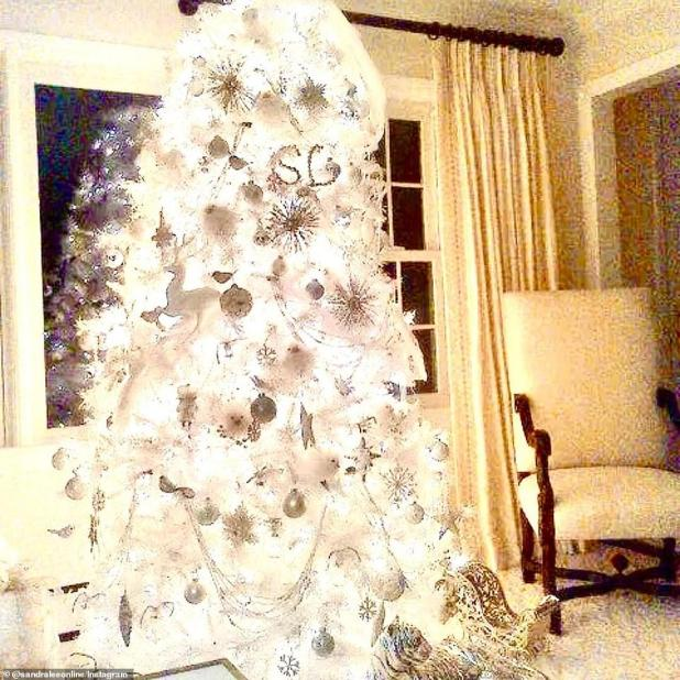 Lee shared this photo on Wednesday showing one of his old majestic white Christmas trees