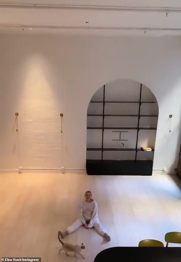 'Empty!' Victoria's Secret Angel Elsa Hosk and her babydaddy Tom Daly emptied out their $3.5M apartment located in SoHo's Cast Iron Historic District in Manhattan on Wednesday