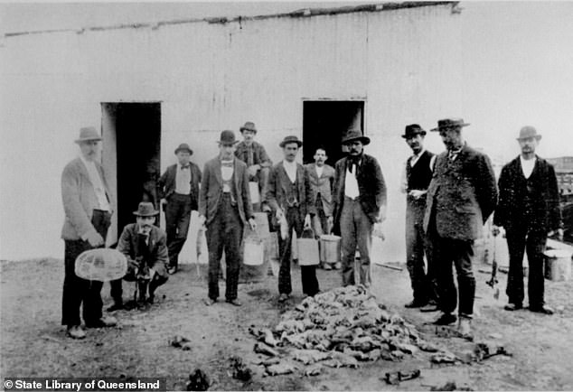 The third bubonic plague tore through Sydney during the early 1900s. Pictured are residents standing over a dead pile of rats. Rats had brought in the disease from overseas