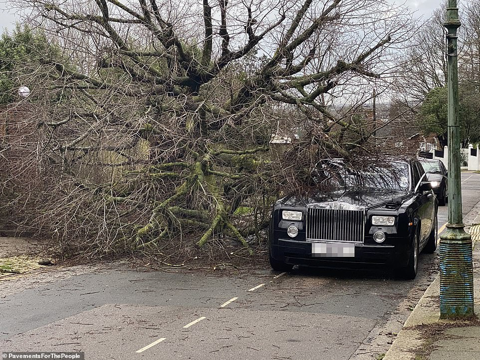 Pictured: A tree came crashing down on this Rolls-Royce in Hove yesterday as high winds caused havoc across the country