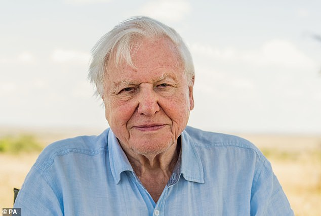 Sir David, who recently worked on Netflix documentary A Life On Our Planet, is an intrepid traveller and has made films from around the world. However, his flying days may be over