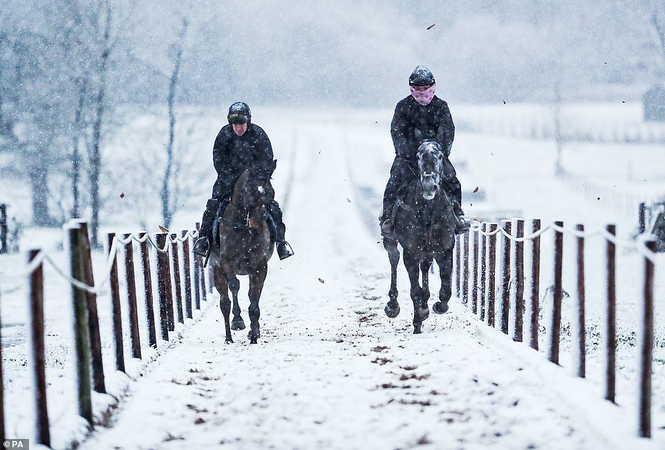 Horses on the gallops in the snow at Sam Drinkwater's Granary Stables in Upper Strensham, Worcester after snow fell overnight