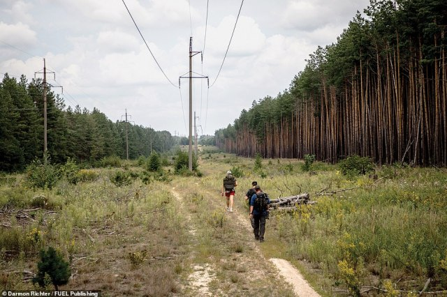 Logging track, Chernobyl Exclusion Zone: Illegal visitors to the Zone typically prefer these remote paths, rather than the main roads which are frequented by police patrols and tour buses