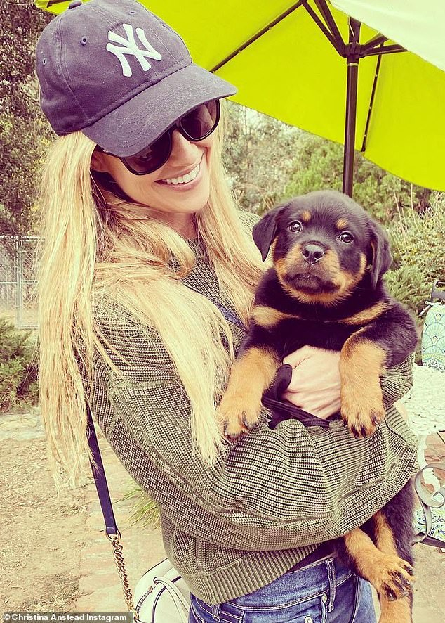 Puppy love: Christina Anstead showed off the cutest new member of her brood Monday, as she introduced their Rottweiler puppy Biggie to her 1.5million Instagram followers with some cute photos and video