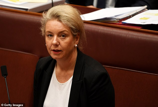 Victorian Nationals senator Bridget McKenzie (pictured) said the drop in the number of sick days requires further investigation