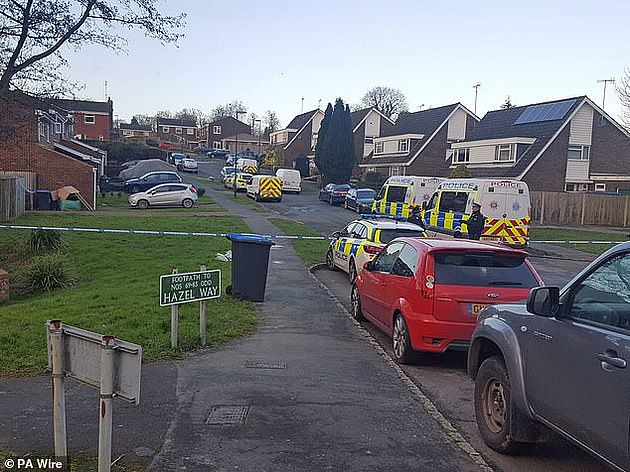 The incident took place outside the couple's  suburban home in Crawley, West Sussex