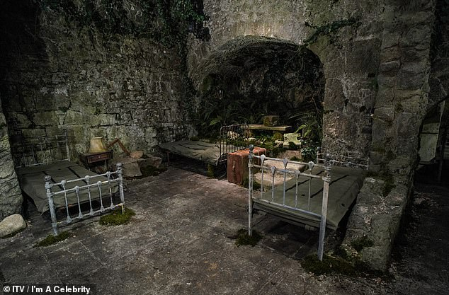 Basics: The celebs had to deal with freezing temperatures and rusty bed frames during their stint in the Welsh castle