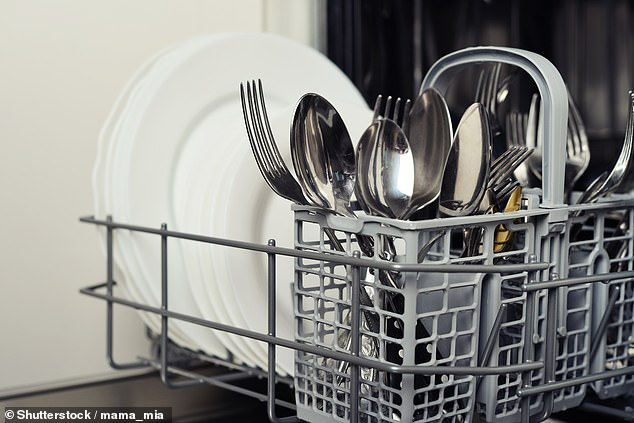 While instruction manuals and brands may have alternative opinions, CHOICE's resident dishwasher guru Ashley Iredale provided a thorough explanation on the best option