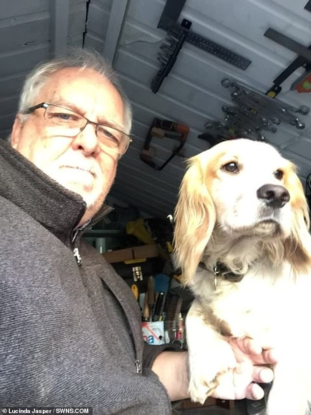Retired Mark Jasper, whose family bought him a dog to help with his anxiety, has posted a £5,000 reward after his pet, a Sprocker Spaniel named Ted, 3, was stolen in a London park