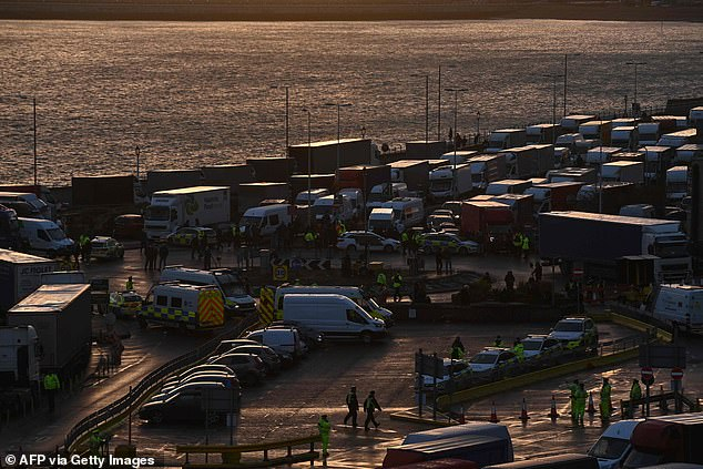 Scarp those Regs: The British Ports Association is calling for the EU-derived Port Services Regulations to be scrapped