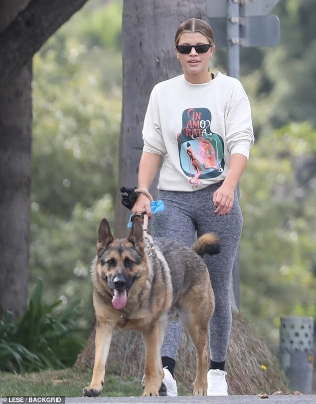 Go for it: Sofia Richie, 22, walks with her family's German Shepherd in Beverly Hills as she stays sporty in a matching gray spandex ensemble and Inamorata crew neck while walking with a friend
