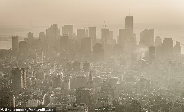 Exposure to what is considered low levels of air pollution over a long period of time can increase the risk of heart attack, stroke, atrial fibrillation and pneumonia among people ages 65 and older. Pictured, air pollution over New York