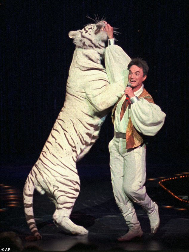 Horn pictured above performing with a white tiger during the duo's 15,000th live show in 1996
