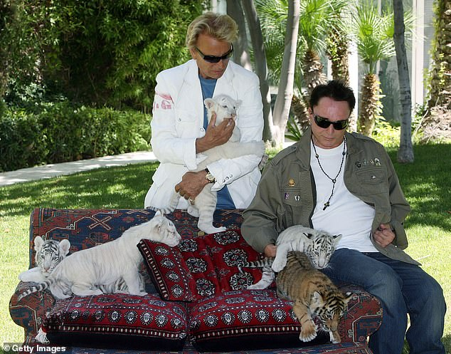 The duo with tiger cubs in Las Vegas in 2008.The Siegfried & Roy show incorporated animal antics and magic tricks