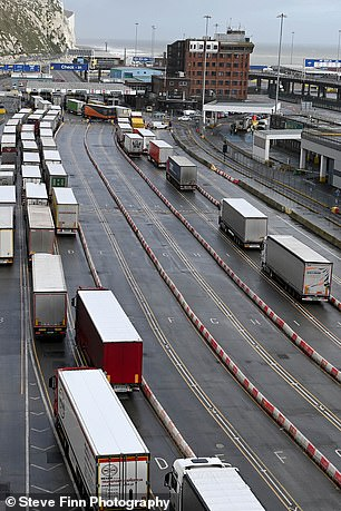The port at Dover on Tuesday as hauliers face post-Brexit customs rules and covid testing