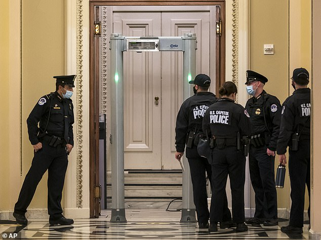 US Capitol Police are seen above near metal detectors that were installed on January 12 - days after the MAGA riot