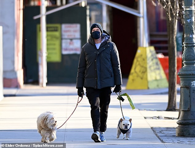 Daddy dog: Hugh Jackman was seen spending time with his canine companions on Saturday while walking through New York's West Village neighborhood.