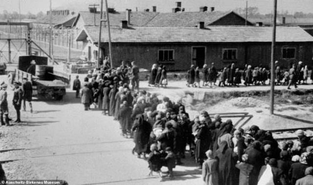The above image shows Jewish women and children who have been judged not fit to work walking to be murdered in the gas chambers. Jewish women and children who have been selected for death walk in a line towards the gas chambers. Every year, millions of people now visit the Auschwitz-Birkenau site, which stands as evidence of the horrific crimes which were committed