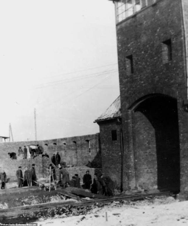 Construction works are seen taking place near the main entrance to Birkenau, which was built next to Auschwitz. The image is believed to have been taken in the spring or summer of 1943. In May 1944, commandant Hoss supervised the laying of a railway line through the main entrance. It was built specifically to transport Hungarian Jews to the camp