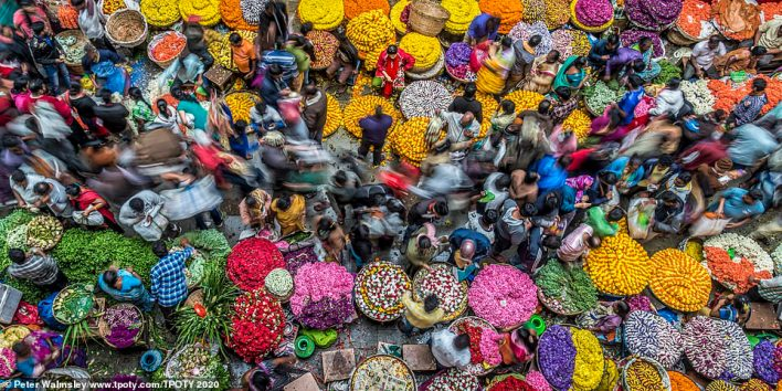 The UK's Peter Walmsley won the 'one shot - colours of life' category with this gem, taken in Bengaluru, India. He said: 'You think you've visited busy markets before? You haven't until you've visited Bengaluru. The flower market is absolutely chaotic! Dive in and you will be carried along with the flow of customers. Photographs in the middle of this melee are hard to achieve, but think a little laterally (well, upwards) and you can climb a couple of storeys and get this bird's eye view of the scrum below'