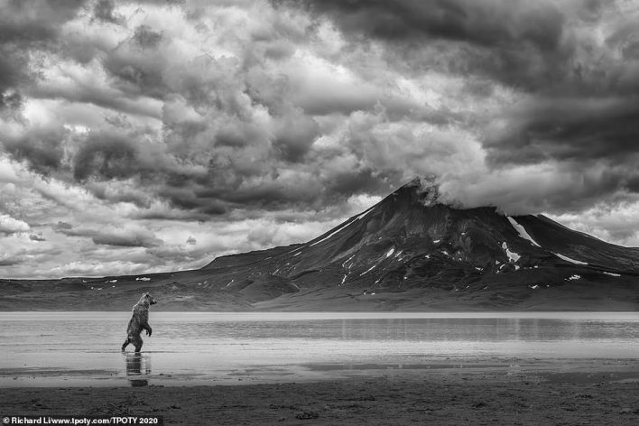 Richard Li from Hong Kong was the travel portfolio runner-up and this image of a bear hunting for salmon in front of a rather impressive volcano in Kamchatka, Russia, was one of the pictures that bowled over the judging panel. Li said: 'There are many salmon spawning in the lake under the Kamchatka volcano in July and August every year, which is the most delicious food for brown bears. Although we would think it is looking at the volcano, this oddly human-like figure is actually looking for fish in the lake'